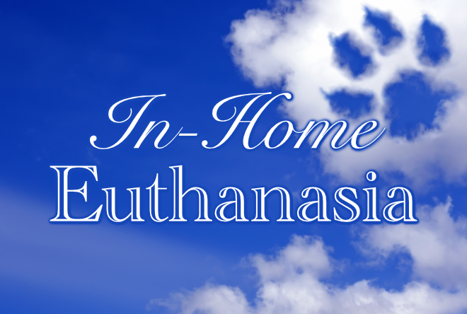 In-Home Euthanasia